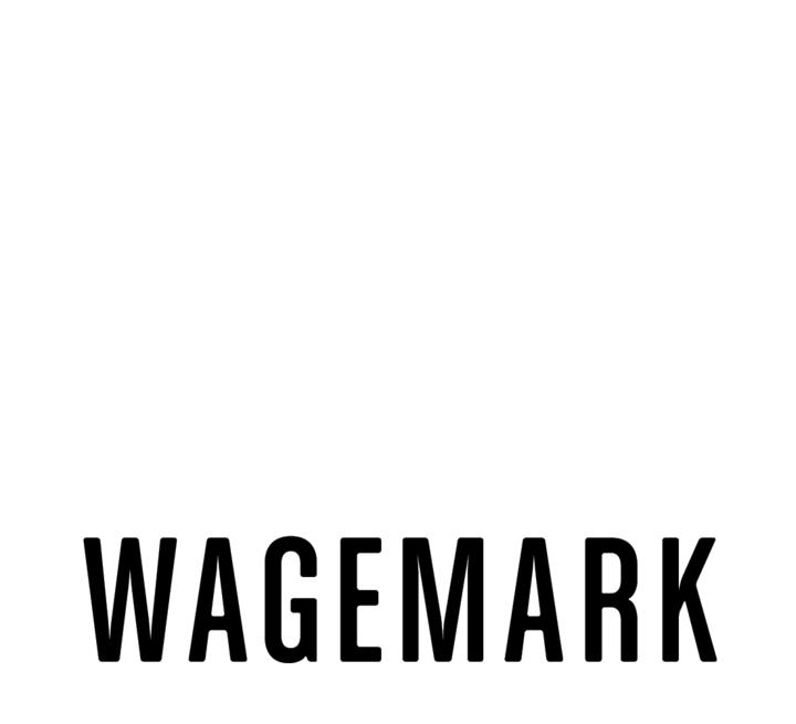 3:1 Wagemark